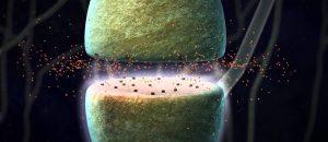 transmiteri-u-nervnom-sistemu