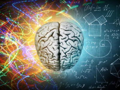 Desnorukost i levorukost – razlike između hemisfera mozga