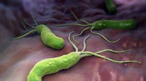 terapija-helicobacter-pylori