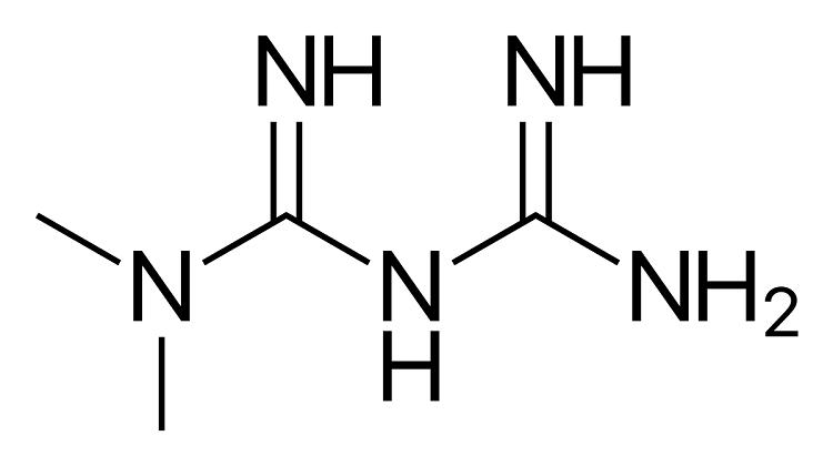 Bigvanidi metformin