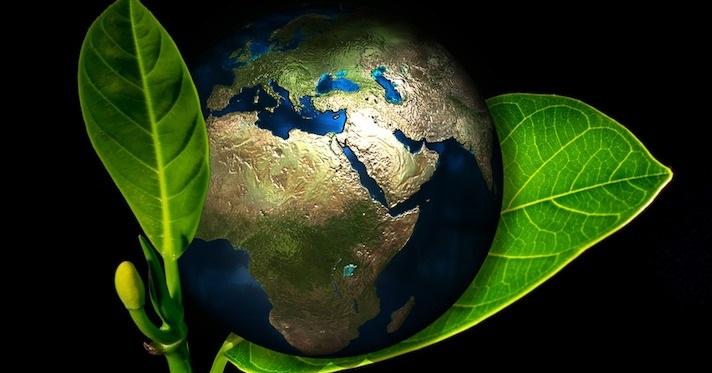 COVID-19-smanjio-emisiju-gasova-za-17%