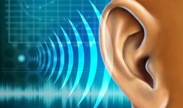 Istraživanje-matičnih-ćelija-ka-obnovi-sluha