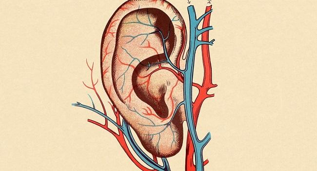 uzorkovanje-krvi-iz-hiperemizovane-usne-resice