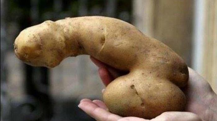 krompir-kao-kontracepcija