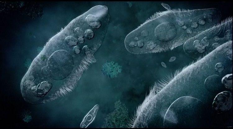 novo-oruzje-u-borbi-protiv-rezistencije-bakterija-na-antibiotike