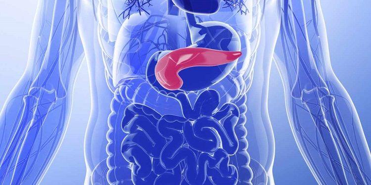 insuficijencija-pankreasa